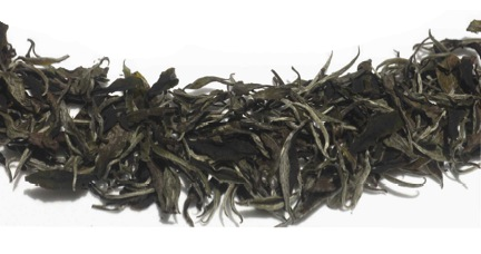 Hawaii Grown Tea - Forest White