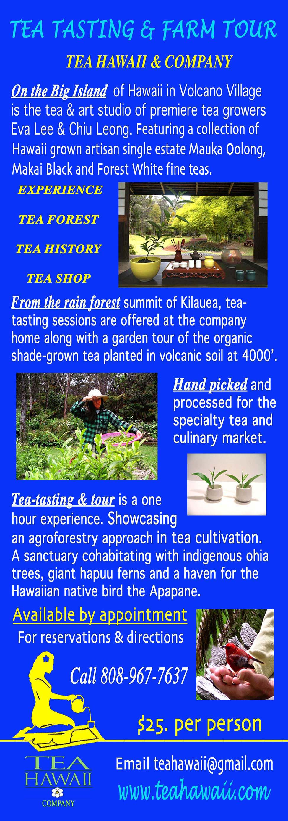 TEA TOUR 3.25__imagewebsite