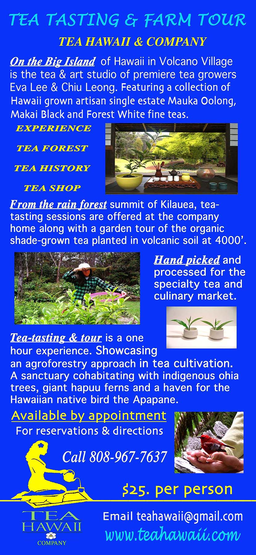 TEA TOUR website 65